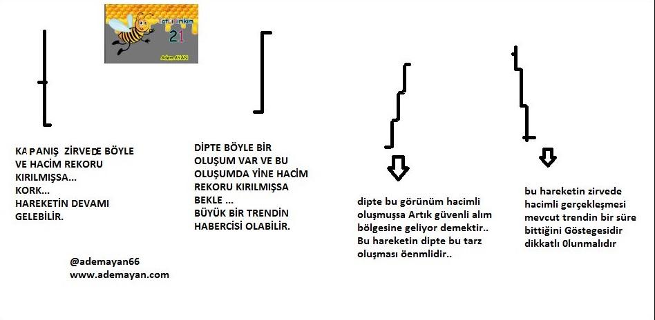 hacim 1